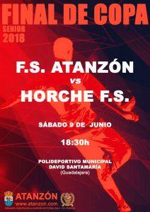 Final de Copa - F.S ATANZÓN - vs - HORCHE F.S. @ Polideportivo Municipal David Santamaría, Guadalajara